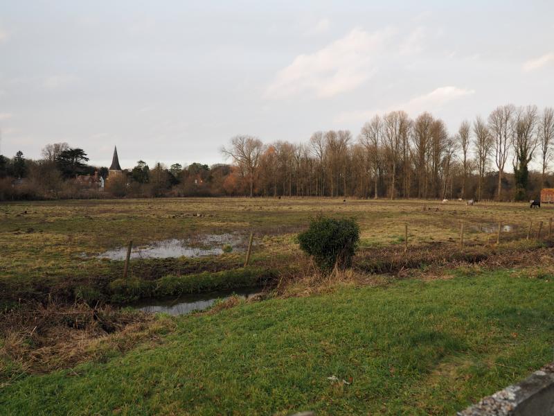 Pole Meadow